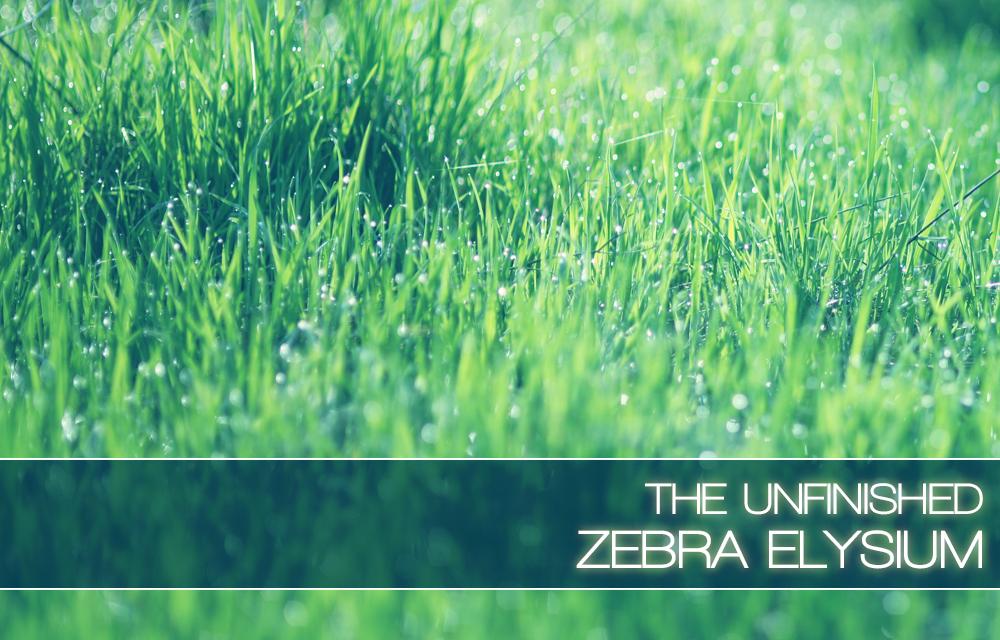 Zebra Elysium